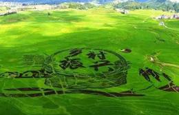 【推动高质量发展调研行·赤壁篇②】赤壁:乡村振兴绘出新美景