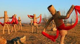 赤壁市举办趣味稻草人文化节  激活农庄生态游