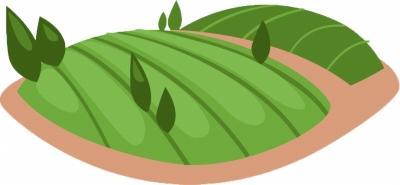 精准普查,为县委县政府决策提供资料 通山全力摸清全县森林资源家底