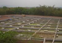 黃沙鋪鎮水產養殖增收致富