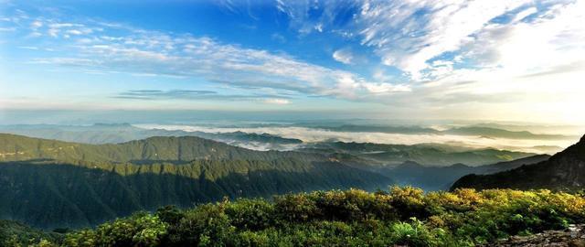 增绿+护绿+复绿?通山县森林覆盖率十年增长8.59个百分点