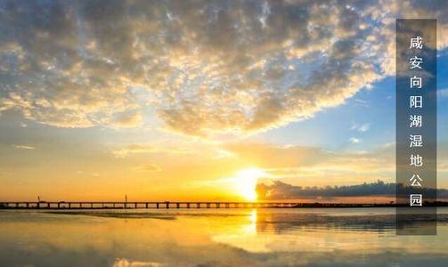 """向阳湖湿地公园迎来今冬第一批""""客人"""""""